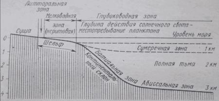 Схематический разрез, иллюстрирующий соотношение между морскими зонами